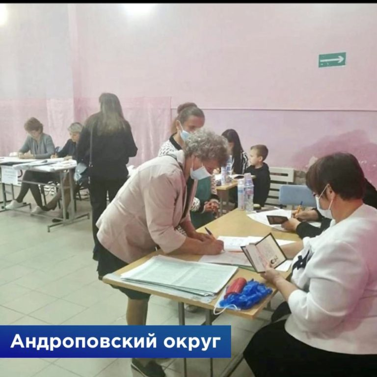 Read more about the article Предварительное голосование «Единой России».